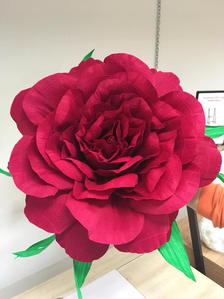 Suur roos krepp-paberist
